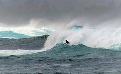 Surfer (thomasgorman1) Tags: surf surfer surfing rough waves sea ocean island hawaii pacific shore colorized travel