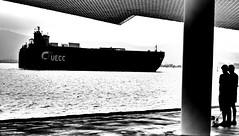 Barco cochero (alfonsocarlospalencia) Tags: barco cochero byn perrito bahía santander boya dúo mirada techo columna centro botín agosto contraluz agua paseo pareja
