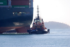 Justice (jelpics) Tags: cargoship commercialship containership conleyterminal everlenient merchantship justice tug tugboats boat bos boston bostonharbor bostonma harbor massachusetts massport ocean port sea ship vessel