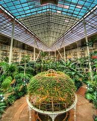 One Big Greenhouse (ahockley) Tags: atrium garden gaylordopryland gazebo greenhouse hotel interior nashville shotoniphone shotoniphone11pro tennessee terrarium