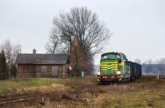 SM42-350 (Mariusz Sychowicz) Tags: 6d sm42 zebra stonka sm42350 fablok pociąg towarowy train rail kolej pkp cargo pkpcargo podlaskie podlasie polska poland łajka zdawka węglarka d2949