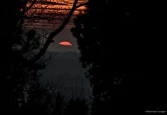 Burg Stolpen (damian.langer) Tags: stolpen burgstolpen sunset germany saxony travelphotography castle countessofcosel placetovisit niemcy podróże hrabinacosel saksonia deutschland sachsen gräfincosel