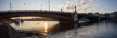 pont de l'université, panorama au 35mm ltm (oras_et_marie) Tags: pontdeluniversité rhône lyon canons35mmf2iiltm panorama pont vintage lens