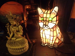 DSC00891 tara and the puddy (belight7) Tags: buddhist cat lamp house old pics london lindas uk england summer home friends