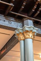 Decorative Column (Jocey K) Tags: tripukeroupe2019 june uk scotland thehunterianmuseum universityofglasgow detail mainhall ceiling decorative decorativecolumn interior