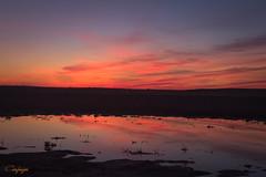 Tan sencillo.... (cienfuegos84) Tags: sunset sol sun reflejos