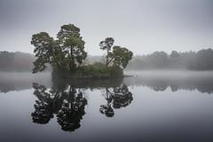 The Island - no 2 (Kadu Flyer) Tags: island surrey lake water trees mist henleypark reflection