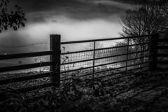 Llanfihangel-y-Creuddyn: The Gate (umbrellahead56) Tags: llanfihangelycreuddyn mist valleymist