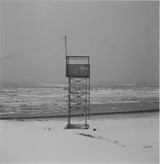 January, 2016 (Coe___) Tags: analogphotography blackandwhitefilm rolleiflex ilfordfp4plus