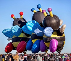 Bee - Joelly Joey Lilly (L to R) (ABQ) 1b (edit) (MO FunGuy) Tags: special shapes hot air balloon albuquerque fiesta