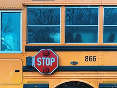 Stop (pb) Tags: schoolbus yellow bus vehicle
