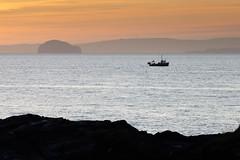 The Bass and the Fisherman (Chris Golightly) Tags: scotland fife bass rock fishing boat men canon sunrise sea