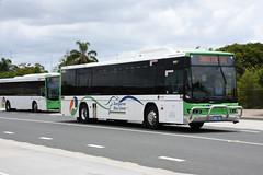 Kangaroo Bus Lines 92 KBL92 (Translink) (Howard_Pulling) Tags: kipparing queensland australia australian bus buses kangaroo
