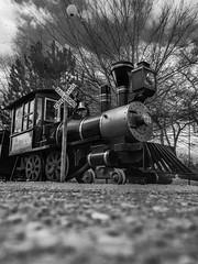 low-comotive (johngpt) Tags: train locomotives appleiphone7plus abqbotanicgardens places tpfbwfrogperspectivechallenge