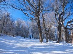 Everett & Mommy On Whistler (Joe Shlabotnik) Tags: 2020 snow skiing vermont january2020 winter everett proudparents okemo sue 60225mm