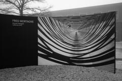 Brandon Westgate (intheclearkid) Tags: bw leica summicron 35mm m240 wetzlar germany photoofphoto fredmortagne hq headquarters fog winter