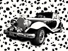Cruella de vil's car from the Disney film 101 Dalmatians (35mmMan) Tags: monochrome panther deville cruella de vil 101 dalmatians disney disneyland paris studios bw montage ville devil pattern