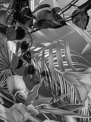 (Ute Kluge) Tags: plants fake wallpaper café wilhelma stuttgart