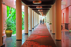 Perspective (ashockenberry) Tags: ashleyhockenberryphotography pacific ocean hotel royal hawaiian beautiful tourists tourist destination idyllic breeze oahu hawaii carpet pillars architecture waikiki surf tropical beauty travel