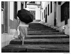 Sombreros ou parapluie? (francis_bellin) Tags: andalousie 2019 espagne cordoba