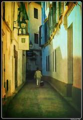 Córdoba_Andalusie_ES (ferdahejl) Tags: córdoba andalusie es dslr canondslr canoneos800d