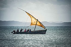 Coastal Sail Boat