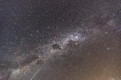 Milky Way in a slight hazy summer sky (Merrillie) Tags: night milkyway starry galacticcore stars nighttime newsouthwales centralcoast beforedawn nightsky starlight afterdark australia astrophotography astrology dark coastal skywatching sky killcarebeach nightscape starlit killcare galaxy