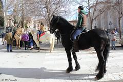 014042 - Alcalá de Henares (M.Peinado) Tags: jinete jinetes animal animales caballo caballos gente sanantón bendicióndesanantón bendición alcaládehenares comunidaddemadrid españa spain 19012020 enerode2020 2020 canoneos60d canon copyright
