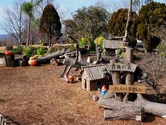 Elf Village (Greg Peterson in Japan) Tags: parks 草津市立水生植物公園みずの森 japan 草津市 culture kusatsu shiga recreation 滋賀県 shigaprefecture