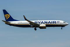EI-FOB (PlanePixNase) Tags: frankfurt fra eddf airport aircraft planespotting ryanair boeing 737 737800 b738