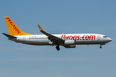 TC-CPZ (PlanePixNase) Tags: frankfurt fra eddf airport aircraft planespotting boeing 737800 pegasus 737 b738
