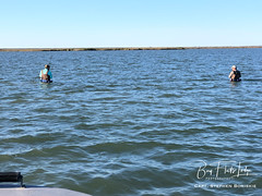 Stephen1-2_0124 (Bay Flats Lodge Seadrift, Texas) Tags: fishing lodge guides ranch bay flats seadrift properties captain chris martin marina services outfitters fly sight casting simmons boats sabine texas parks cca bct airboat red castaway coastal marsh matagorda