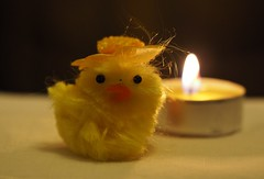 fluffy (fotomie2009) Tags: fluffy smileonsaturday pulcino chick baby yellow candle candela olympus macro obiettivo hat cappello hsos