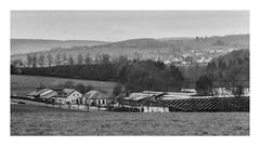 Film grain - Landscape near Lake Kell (werner-marx) Tags: analog film meinfilmlab 35mm canonftb ilforddelta3200 kellamsee filmgrain