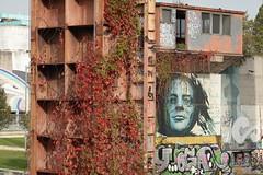 Parco Dora (area Vitali) @ Turin