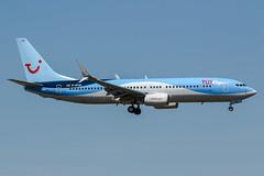D-ATUO (PlanePixNase) Tags: frankfurt fra eddf airport aircraft planespotting plane boeing 737800 737 b738 tui tuifly