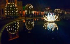 Christmas Garden, Wilhelma (twheide) Tags: christmasgarden wilhelma stuttgart zoo night light reflection