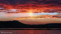 """A la caza del último rayo de sol""/""Catching the last sunbeam"" (Pétrola, Albacete, Spain). (Recesvintus) Tags: albacete pétrola laguna lagunas reservanatural naturaleza nature landscape paisaje atardecer puestadesol sunset twilight goldenhour cielo sky colours colors colores sol sun lagoon sunbeam castillalamancha spain españa recesvintus franciscogarcíaríos"