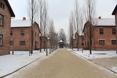 IMG_6708 (Guven Celikkaya) Tags: auschwitz birkenau krakow poland nazi death camp concentration camps polonya toplama kampı