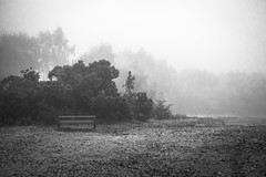 Vacant Space (kmcgphoto1968) Tags: cold damp winter mist fog bench park early morning black white depression awareness loneliness isolation abandoned landscape tones environmental