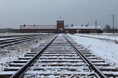 IMG_6751 (Guven Celikkaya) Tags: auschwitz birkenau poland nazi concentration polonya krakow toplama kampı