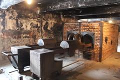 IMG_6729 (Guven Celikkaya) Tags: auschwitz birkenau krakow poland nazi death camp concentration camps polonya toplama kampı