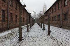IMG_6726 (Guven Celikkaya) Tags: auschwitz birkenau krakow poland nazi death camp concentration camps polonya toplama kampı
