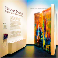 Human Impact (Timothy Valentine) Tags: exhibition large artwork 2020 fullercraftmuseum datesyearss 0120 brockton massachusetts unitedstatesofamerica iphone3651