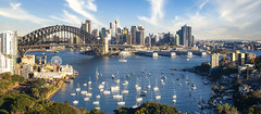 View point of Sydney harbour with city and bridge in day time (anekphoto) Tags: vacation skyline sunlight morning blue day transport park bridge river north landmark education tourist outdoor waterfront cbd landscape cityscape city skyscape yacht ship panorama business view harbour sydney water australia sky tower aerial travel infrastructure urban circularquay famous architecture therocks ferry street summer building holiday tourism harbor australian bluesky nyc