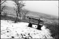 Zöbing (Harald Reichmann) Tags: zöbing heiligenstein landschaft winter bank schnee langenlois nebel