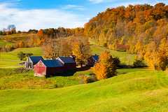Jenne's Farm - A small colorful farmhouse with small road leading to it in the green field with autumn tree and blue sky in Vermont State of USA (baddoguy) Tags: agricultural field autumn leaf color awe backgrounds beauty in nature blue image copy space country road famous place farmhouse forest grass green horizontal house human settlement landscape scenery lush foliage majestic multi colored new england usa no people nonurban scene outdoor pursuit outdoors photography rural single lane sky sunlight sunny tourism tranquil tranquility travel destinations tree area variegated vermont vibrant village