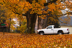 Beautiful Autumn Scene in Vermont (Vermont Fall Foliage) (baddoguy) Tags: architecture autumn leaf color beauty in nature building exterior car cold temperature image copy space environment forest horizontal house idyllic land vehicle loneliness low angle view memories mode transport no people nonurban scene nostalgia orange parking photography pickup truck public park rural scenics season single object tranquility tree area usa vermont white wood material yellow