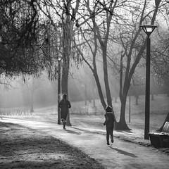 La course du temps, projection ou nostalgie ?  / The race of time (PhlippeC.) Tags: square carré monochrome blackwhite noirblanc reims marne parc course matin nature brume fog brouillard street
