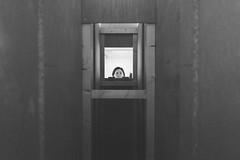 square (__J) Tags: coberlin exhibition ausstellung sonyalpha7ii sonyalpha7m2 sonyilce7m2 sonyalpha7 sonyalpha samyangaf35mmf28fe samyang35mm28 samyang35mm samyang3528 35mm samyang primelens festbrennweite berlin blackandwhite schwarzweis sw bw monochrome monochrom amerikahaus